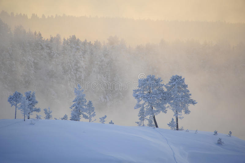 emotionell vinter arkivbild