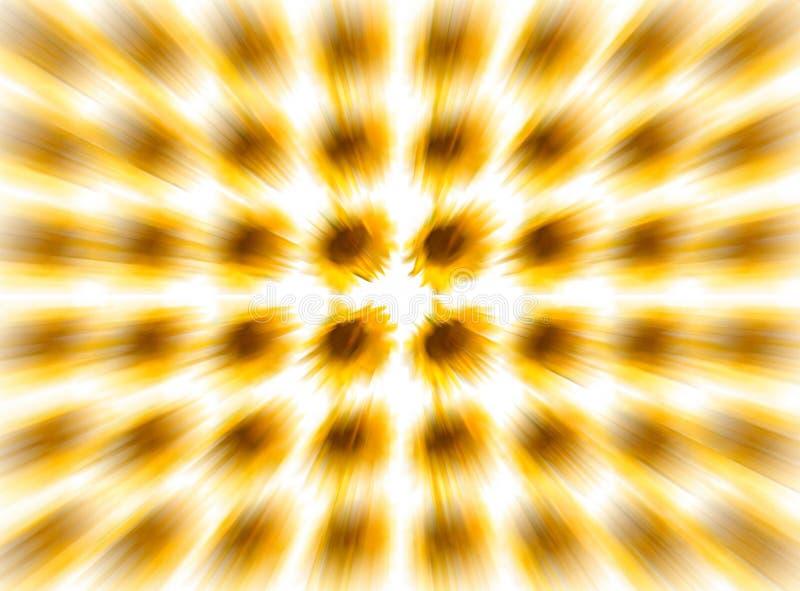 Empañe el girasol ligero en el fondo blanco, ningún borde quebradizo del amarillo del efecto del volumen del movimiento de la vel fotografía de archivo libre de regalías