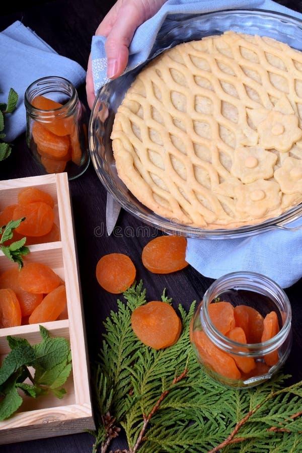 Empanada con los albaricoques secados y rematada con los pasteles del enrejado fotografía de archivo libre de regalías