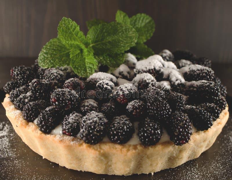 Empanada de Blackberry imagen de archivo libre de regalías