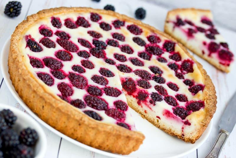 Empanada de crema agria de Blackberry foto de archivo
