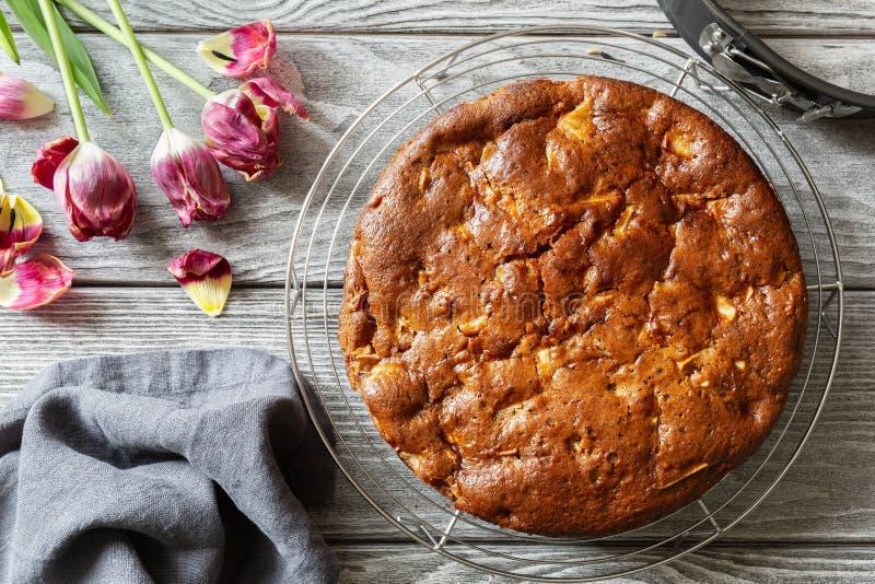 Empanada de manzana hecha en casa del vegano Charlotte en un enrejado fotos de archivo libres de regalías