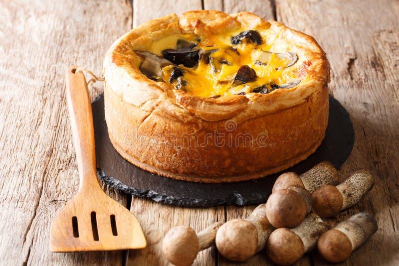 Empanada sabrosa deliciosa con las setas salvajes, queso cheddar, chicke fotografía de archivo