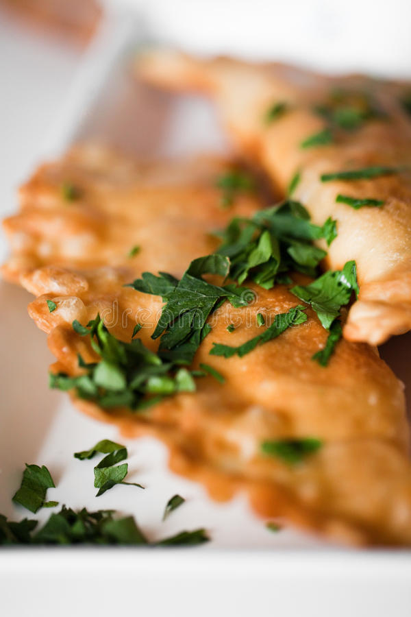 empanadas στοκ φωτογραφία