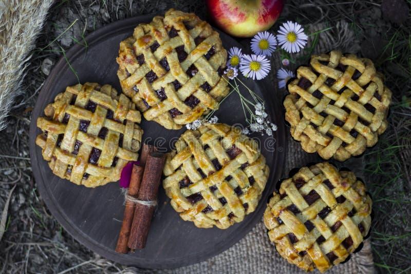 Empanadas de la mano de la manzana, stciks del canela y manzanas orgánicos hechos en casa fotografía de archivo