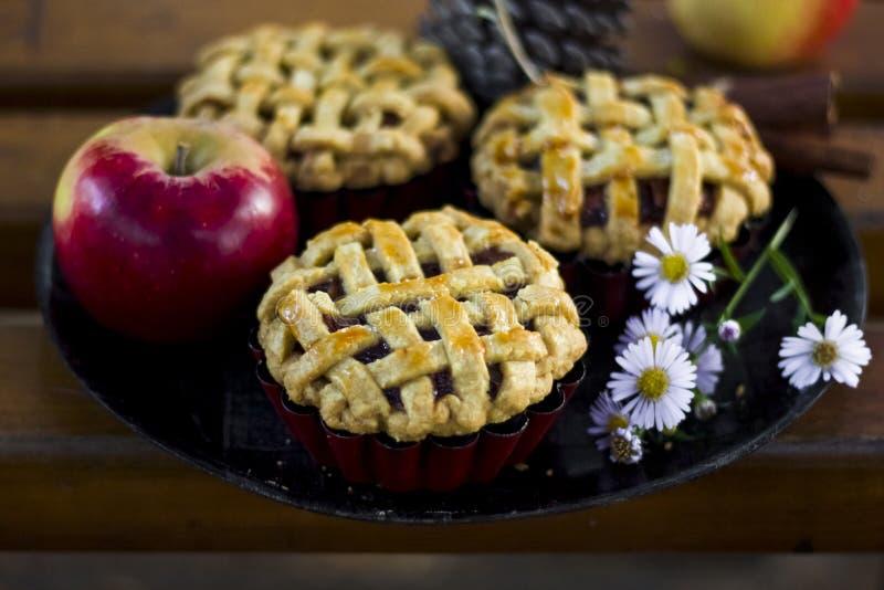 Empanadas de la mano de la manzana, stciks del canela y manzanas orgánicos hechos en casa fotos de archivo