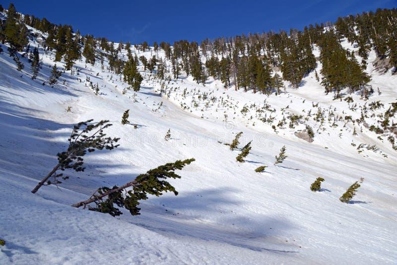 Empape las cuestas angulosas en la montaña que muestra el terreno de la avalancha fotos de archivo libres de regalías