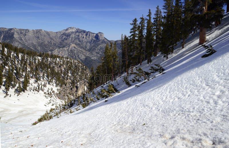 Empape las cuestas angulosas en la montaña que muestra el terreno de la avalancha imágenes de archivo libres de regalías