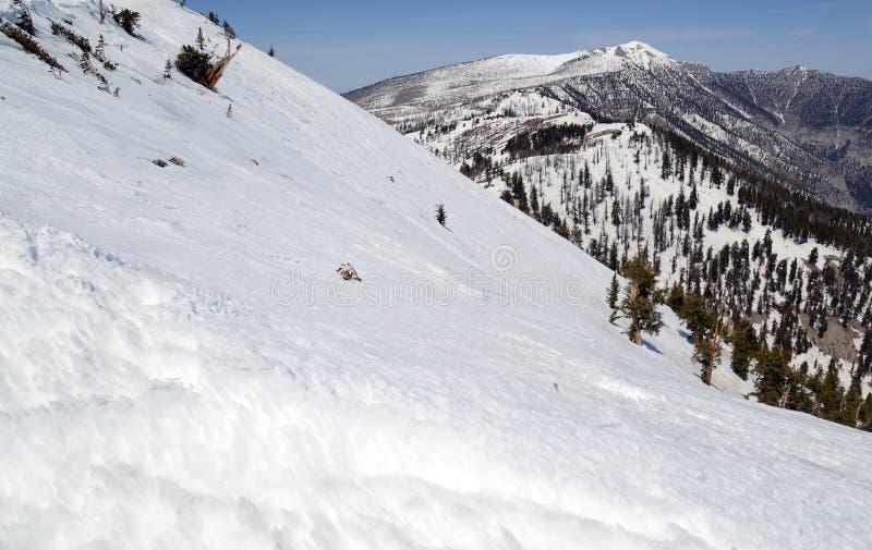 Empape las cuestas angulosas en la montaña que muestra el terreno de la avalancha imagen de archivo libre de regalías