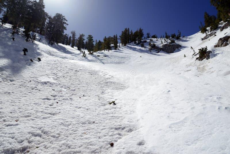 Empape las cuestas angulosas en la montaña que muestra el terreno de la avalancha fotografía de archivo libre de regalías