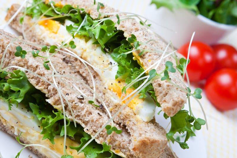 Emparedado sano del huevo para el almuerzo imagenes de archivo