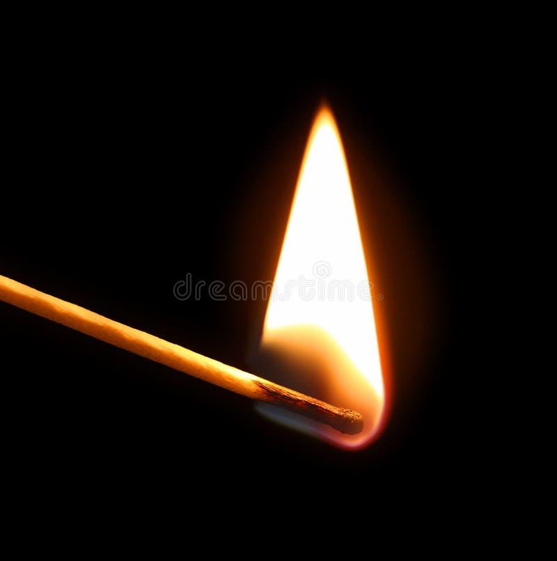 Emparejamiento ardiente fotografía de archivo