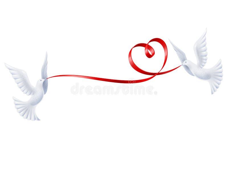 Pombos com uma fita sob a forma do coração ilustração do vetor