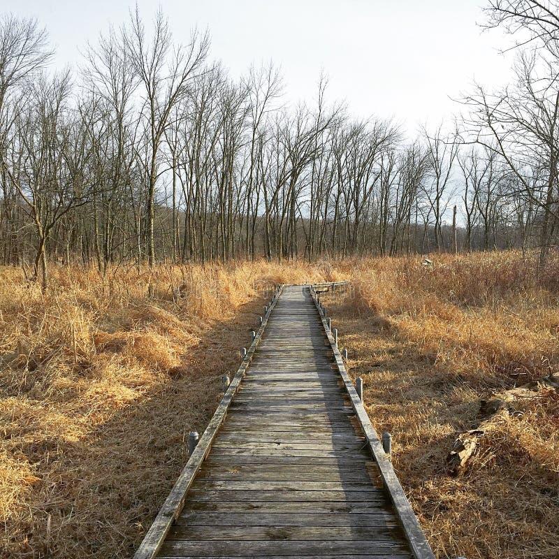 Empty Walking stock photos