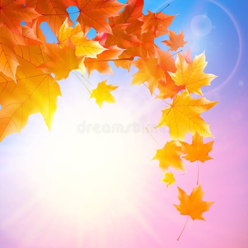 Empfindliche Herbstsonne mit grellem Glanz auf blauem Himmel lizenzfreie abbildung