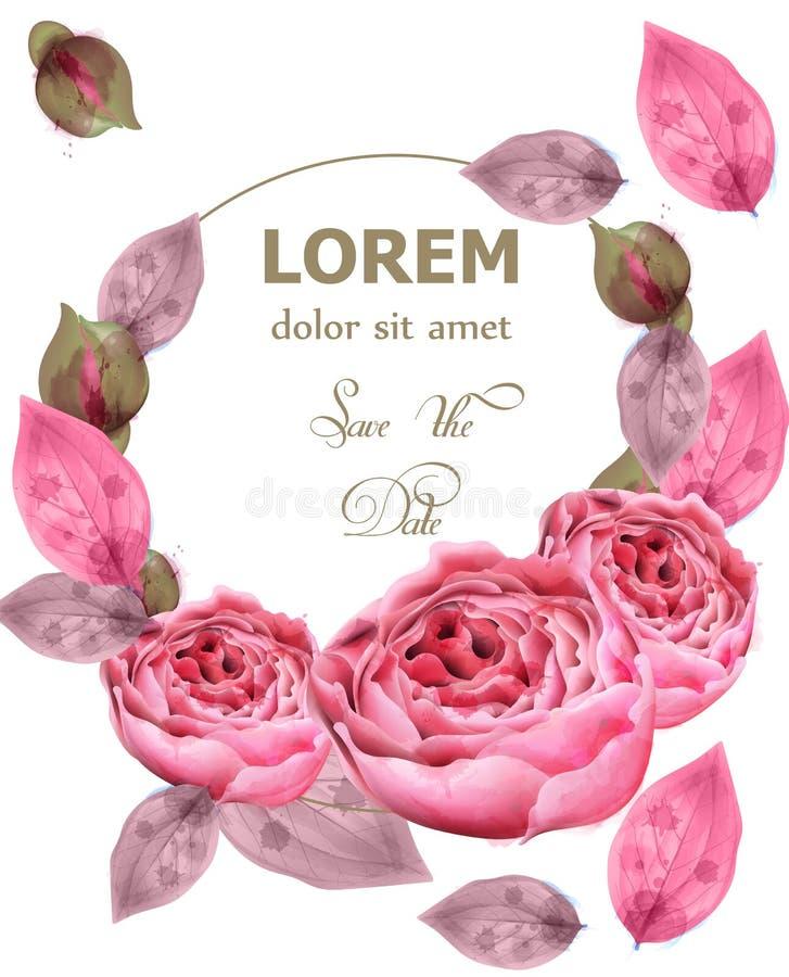 Empfindliche rosa Rosen winden Vektor Die Illustration enthält Transparenz und Effekte Eleganzblumen tapezieren Dekorative Blumen lizenzfreie abbildung