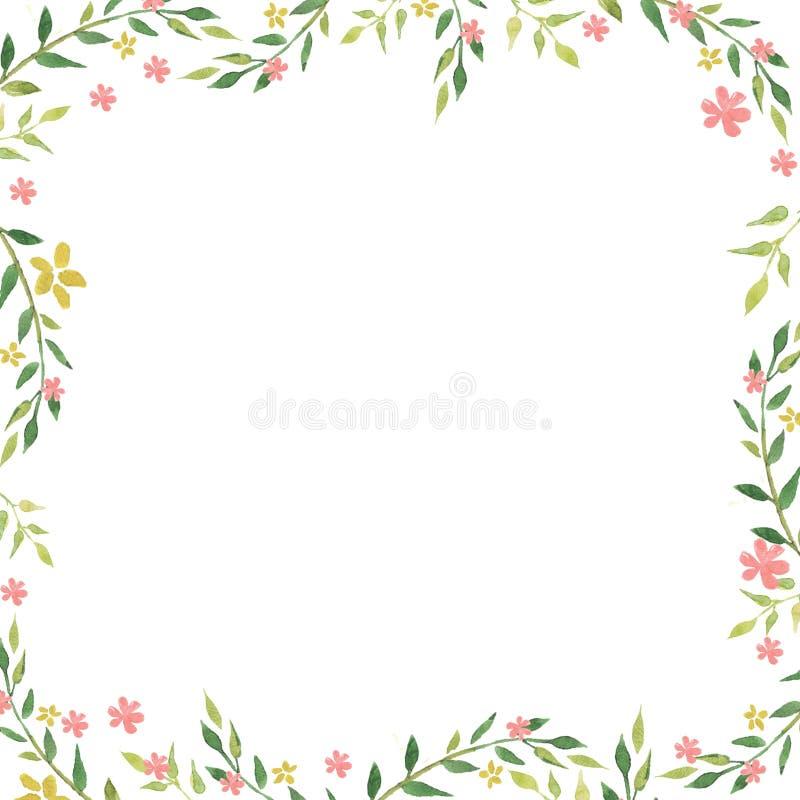 Empfindlicher Aquarellrahmen von Federblättern und von Blumen Hand gezeichneter Blumenaquarellhintergrund lizenzfreie abbildung