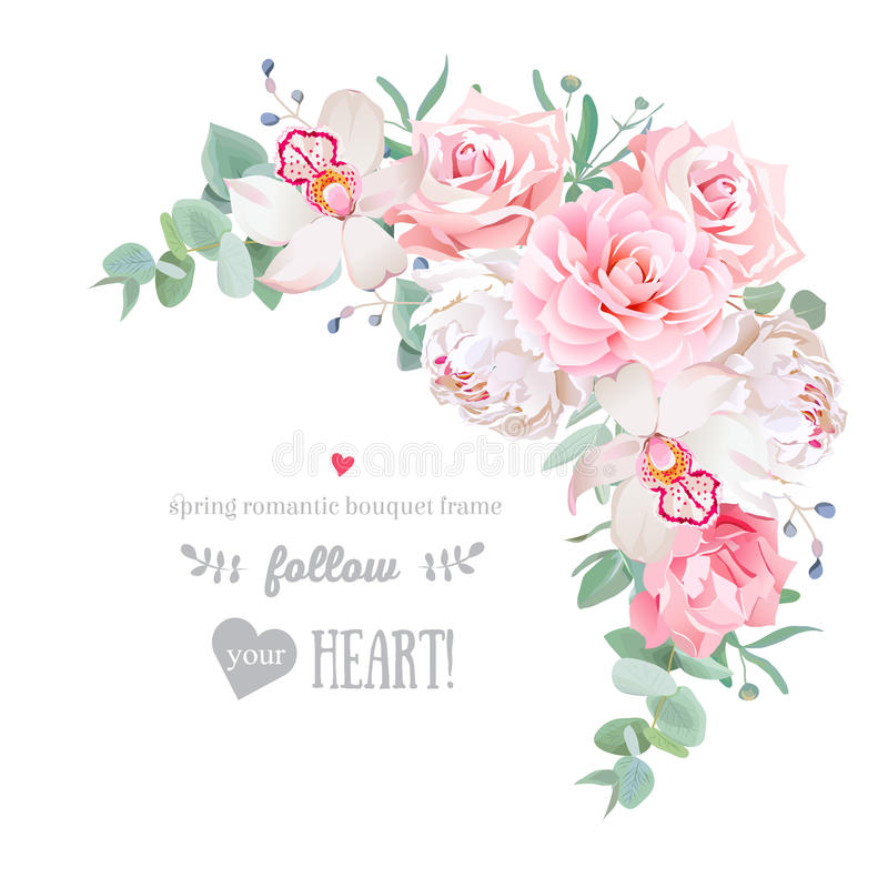 Empfindlicher Blumenvektorrahmen mit Pfingstrose, Kamelie, stieg, Orchidee, Gartennelke, tadelloses eucaliptus auf Weiß vektor abbildung