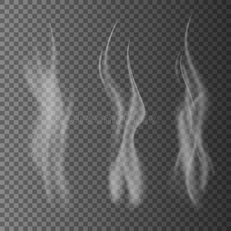 Empfindlicher weißer Zigarettenrauch bewegt auf transparente Hintergrundvektorillustration wellenartig stock abbildung