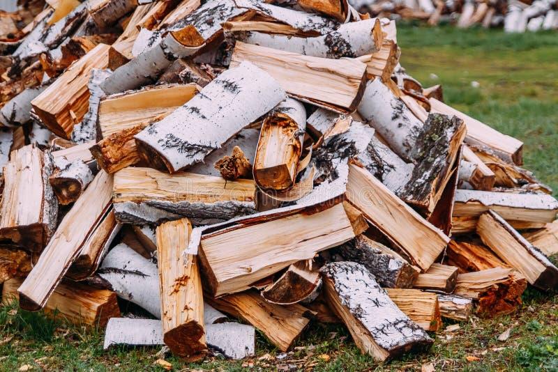 Empilé dans une pile de bois de bouleau sec images libres de droits