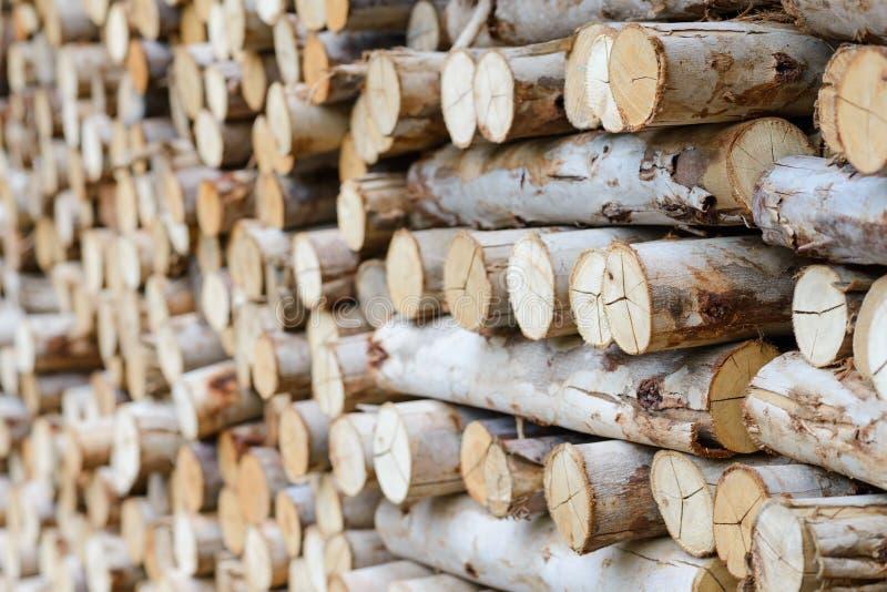 Empilé du bois de chauffage préparez-vous à la cheminée, barbecue images stock