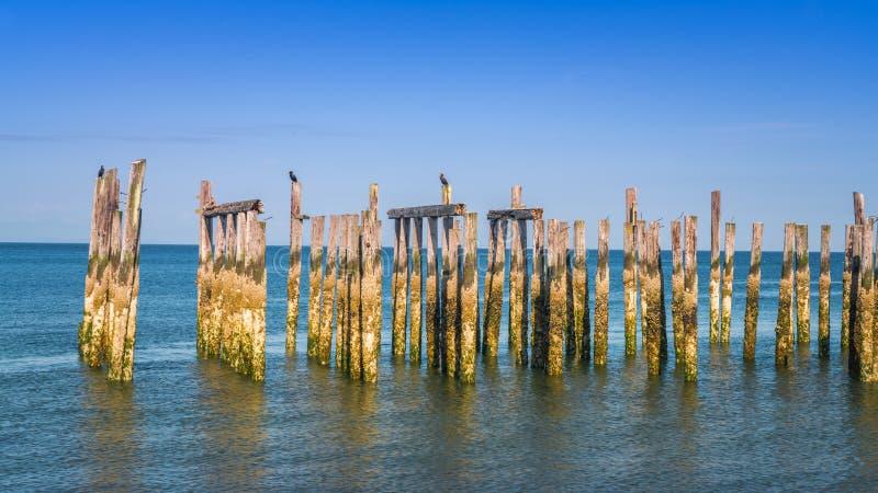 Empilages en bois avec des vues d'océan de ciel bleu photographie stock libre de droits