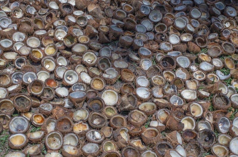 Empilez la coquille de la noix de coco, desséchez-vous pour l'industrie pétrolière d'huile de noix de coco image libre de droits