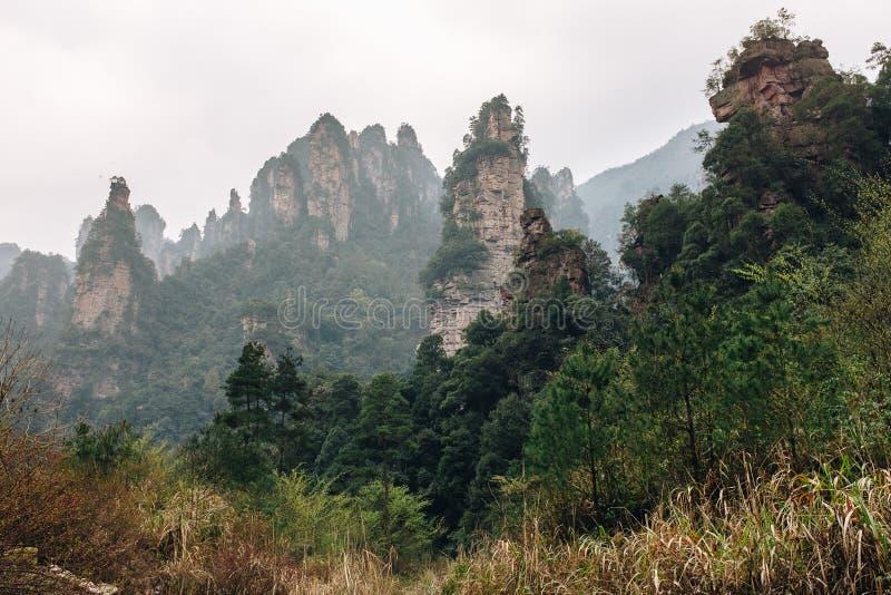 Emplacement avartar de film de l'UNESCO de Zhangjiajie, Chine photo libre de droits