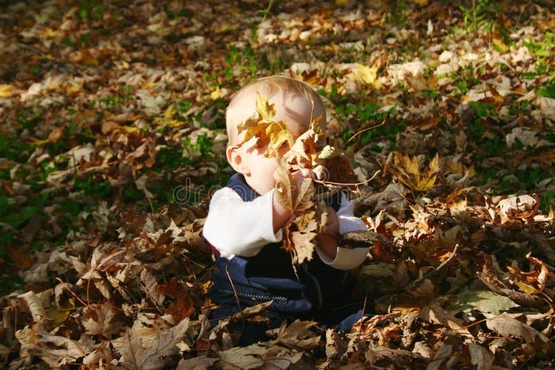 Bébé en automne photo stock