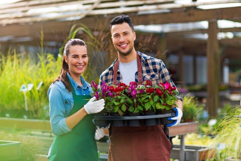 Empleados del centro de jardinería foto de archivo libre de regalías