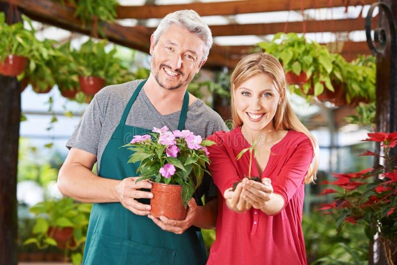 Empleados en centro de jardinería con la flor y el almácigo imagen de archivo