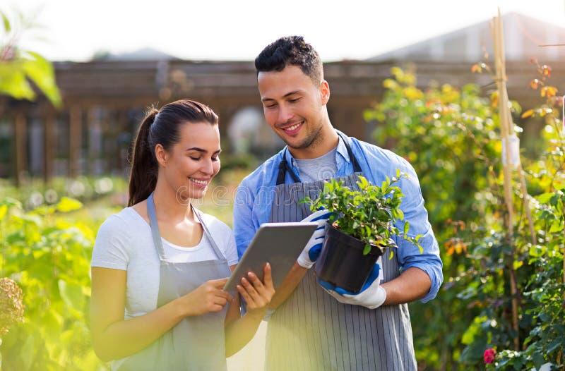 Employés de jardinerie image stock