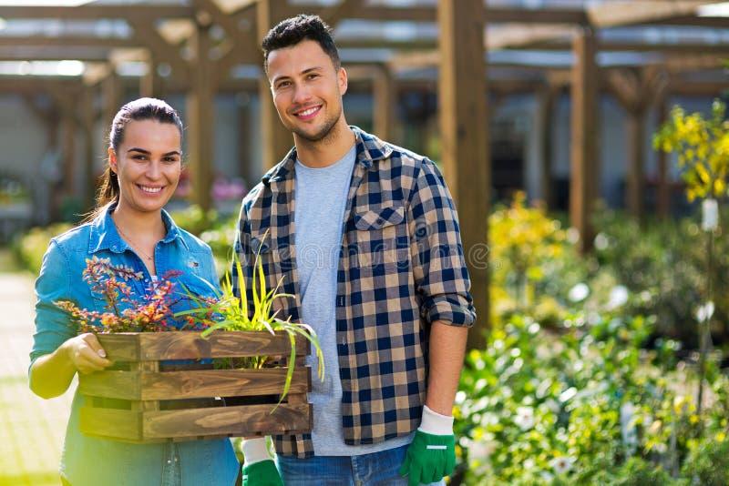Employés de jardinerie photographie stock libre de droits