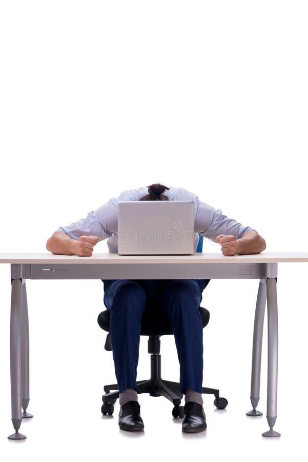 Employee working isolated on white background stock image