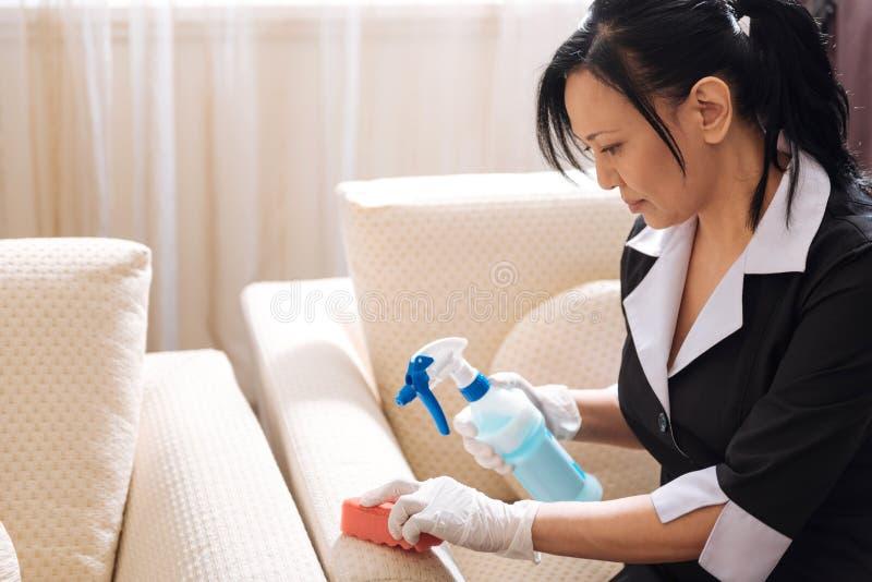 Empregada doméstica agradável séria do hotel que limpa o sofá foto de stock royalty free