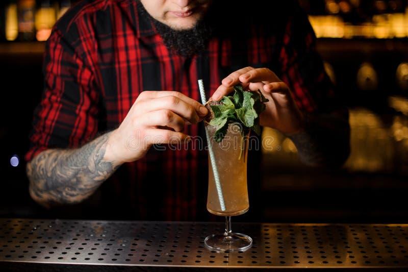 Empregado de bar Tattooed que decora a bebida saboroso de Sherry Cobbler em um cockt imagens de stock royalty free