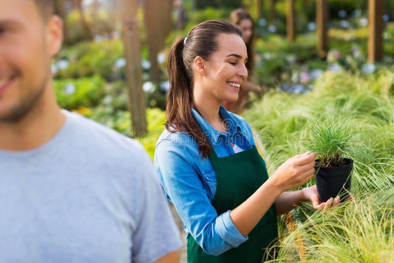Empregados do Garden Center imagens de stock royalty free