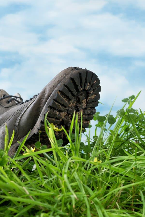 Empreinte de pas écologique photo libre de droits