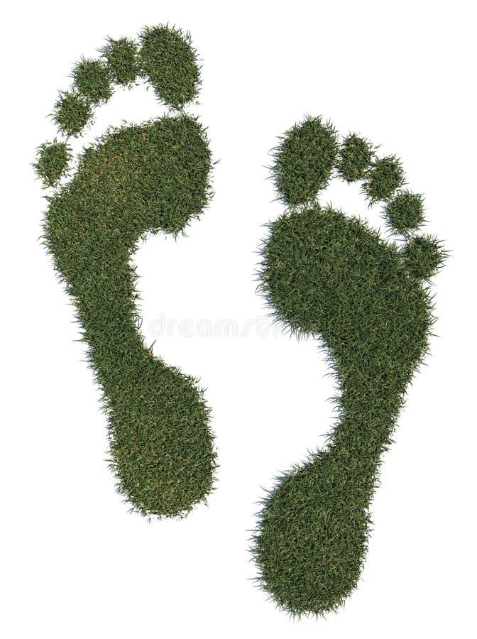 Empreinte de pas d'herbe photos stock