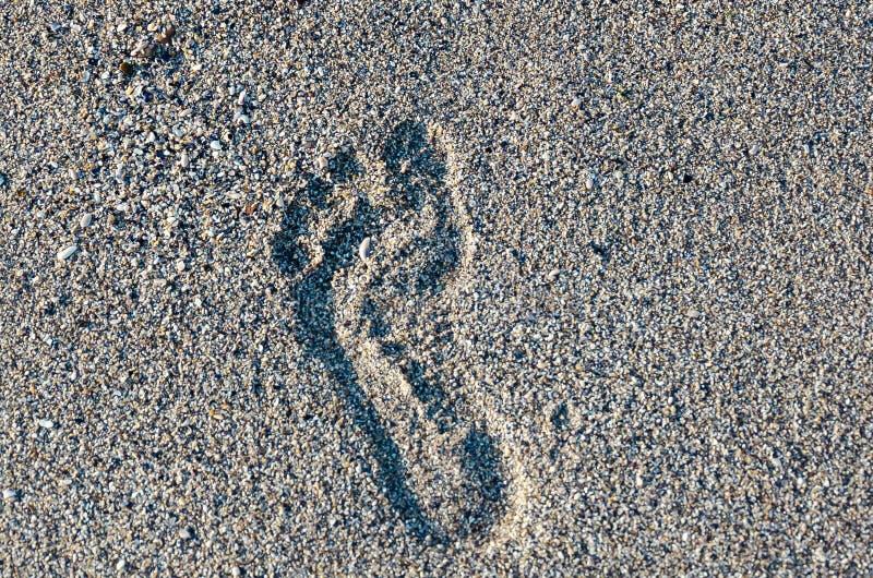 Empreinte de pas dans le sable Empreinte de pas humaine sur le sable de mer humide Empreinte de pas nu-pieds sur le sable par la  photographie stock