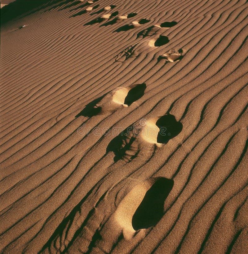 Empreinte de pas de désert images libres de droits