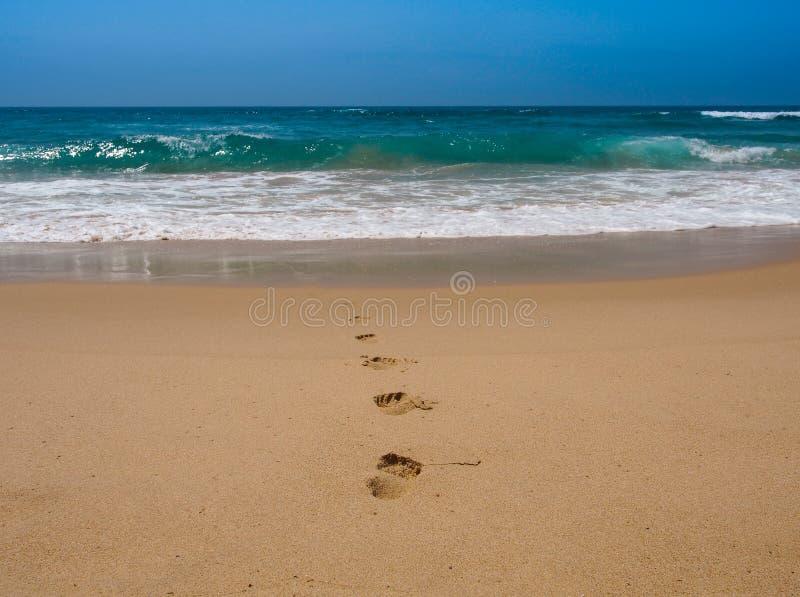 Empreinte de pas sur la plage photos stock