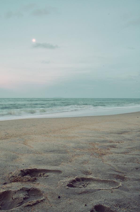 Empreinte de pas sur le sable photos libres de droits