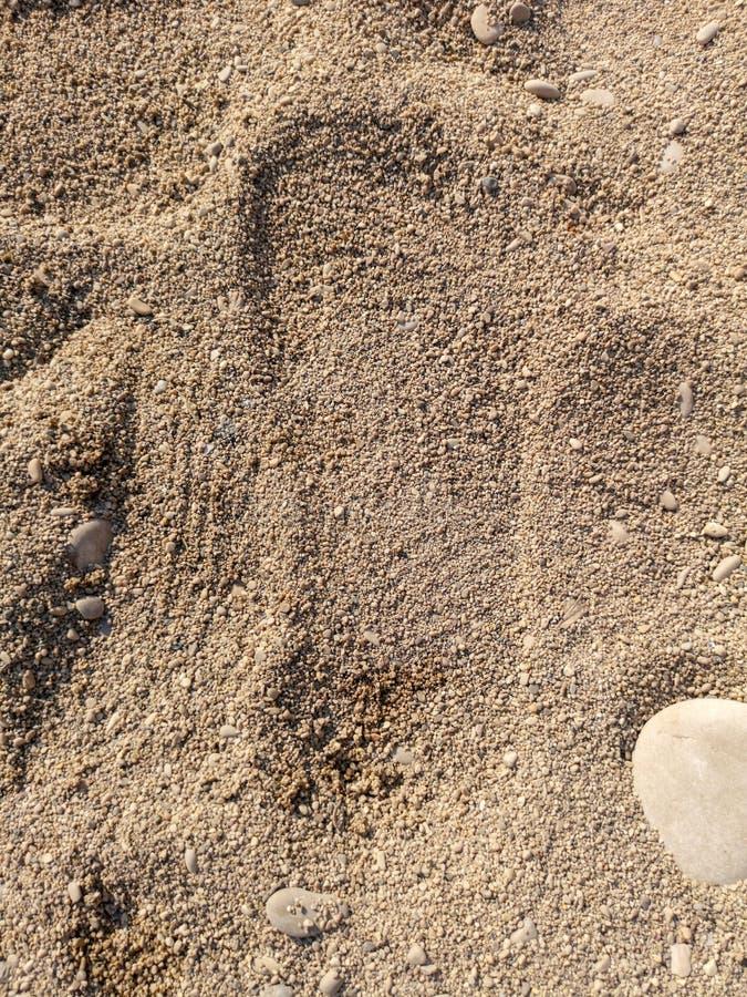 Empreinte de pas sur le sable de mer images libres de droits