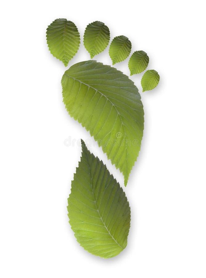 Empreinte de pas verte de lame de carbone images libres de droits