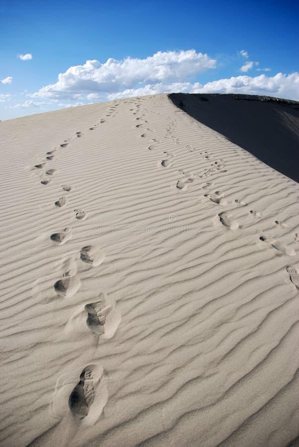 Download Empreintes De Pas Au-dessus Des Dunes De Sable Photo stock - Image du scénique, marchepieds: 8653708