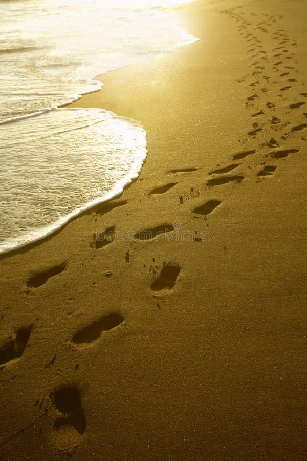 Empreintes de pas au lever de soleil images stock