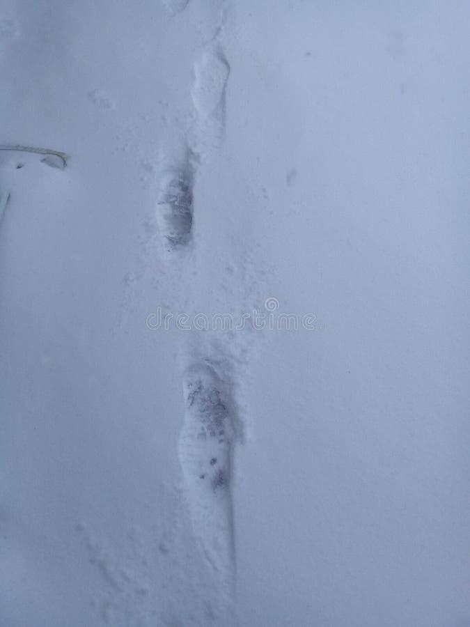 Empreintes de pas d'enfants dans la neige photo stock