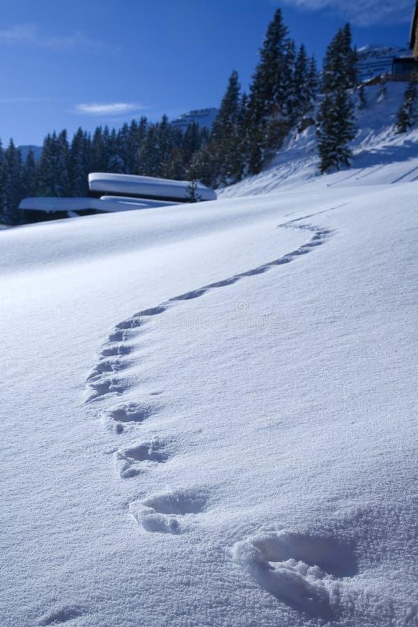 empreintes de pas dans la neige images stock