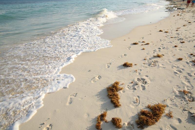Empreintes de pas dans le sable près de la mer bleue photographie stock